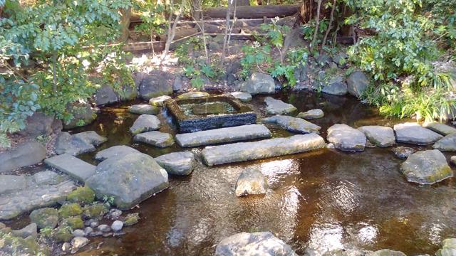 井の頭公園のお茶の水の湧水