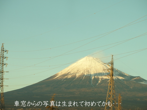 P1150_600.jpg