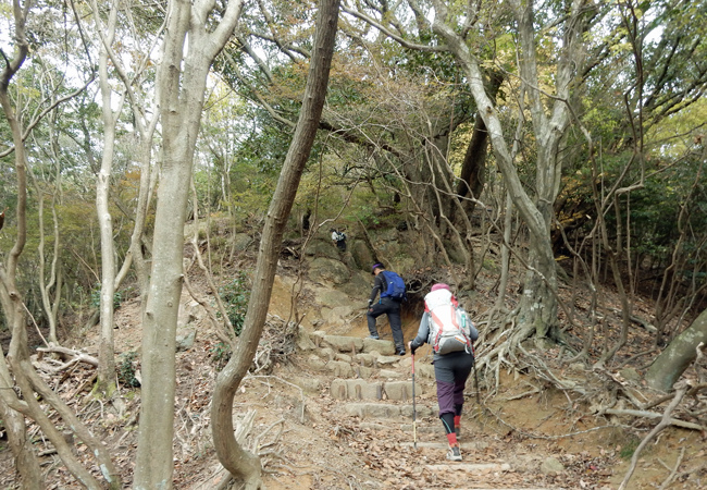 2016,11,13六甲全山縦走-12
