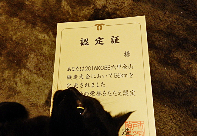2016,11,13六甲全山縦走-26