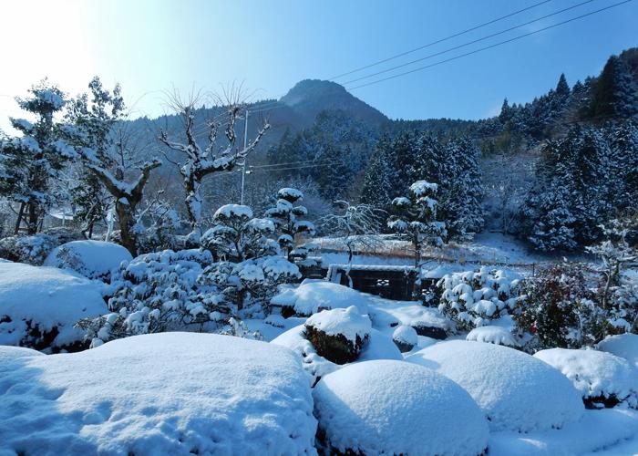 2017,1,21-1雪景色