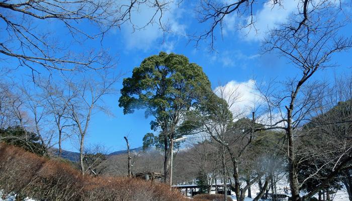 2017,2,11難所ヶ滝-24
