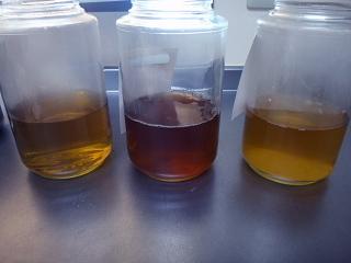 中性・アルカリ性・酸性抽出