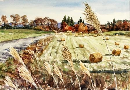 草原の晩秋