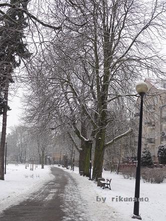 冬のポーランド
