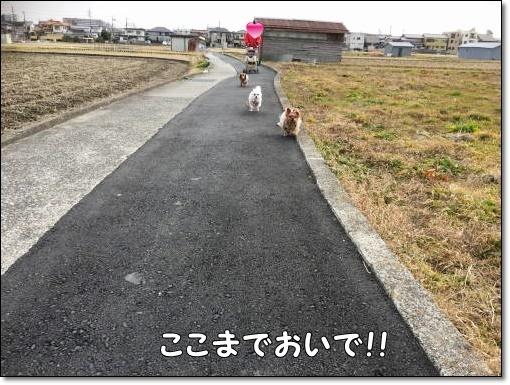 IMG_9407.jpg
