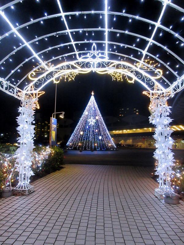 琵琶湖4170109
