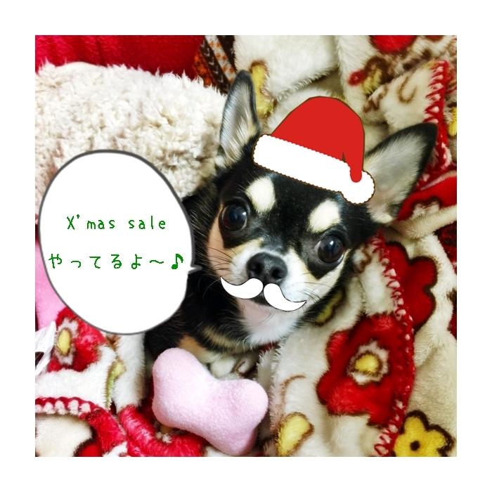 2016-11-06 ちまき 7 ブログ用 クリスマスセール用