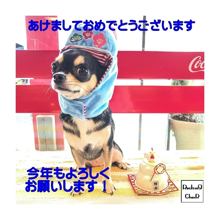 2016-12-31 ちまき 文字入り ブログ用