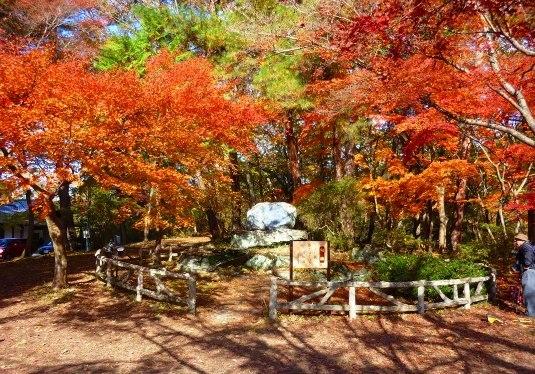 月の石紅葉公園