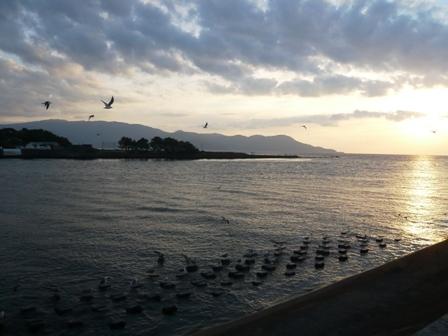 沼津港:夕陽