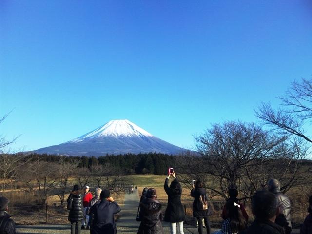 朝霧高原:富士山2