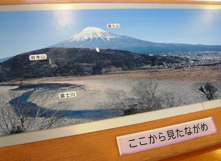 富士山のめぐみ:店内2