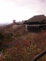 20170125清水寺