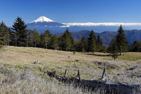 笹原と富士