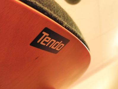 tendo7.jpg