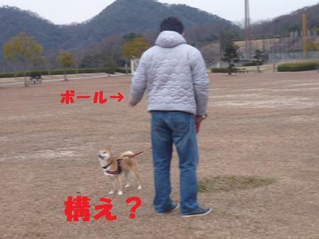 blog11377.jpg