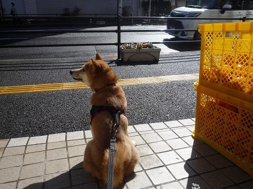 blog11469.jpg