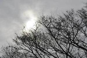 Overcast Sky
