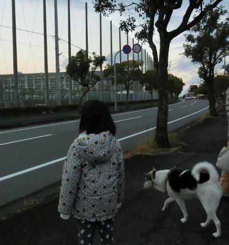 散歩 005 (449x480)