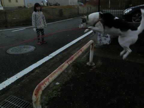 散歩 004 (480x360)