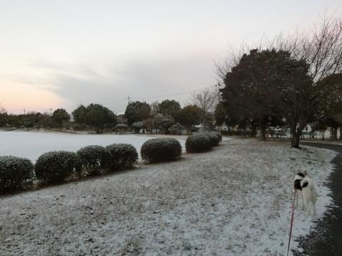 雪 003 (480x360)