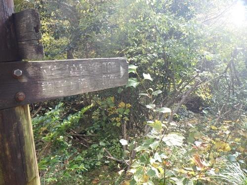 調子ヶ滝23