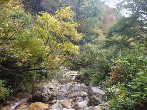 調子ヶ滝35