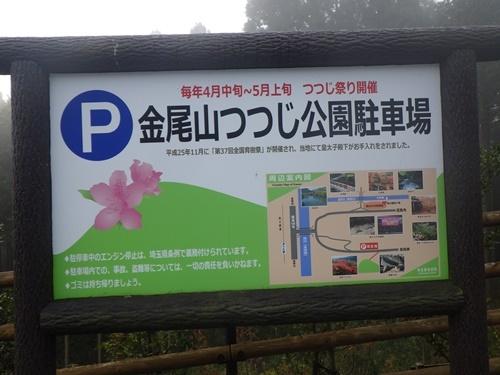 金尾山つつじ公園1