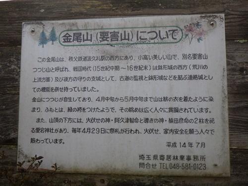 金尾山つつじ公園12