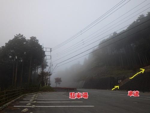 金尾山つつじ公園2
