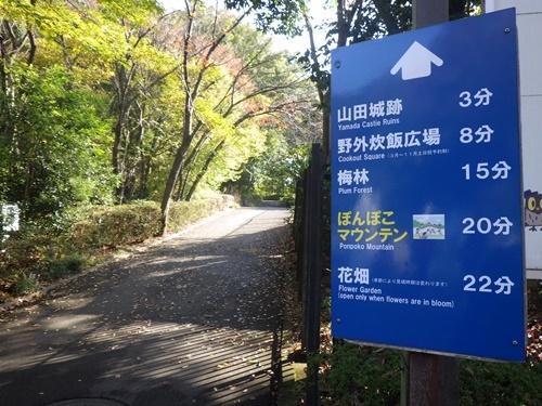 森林公園5