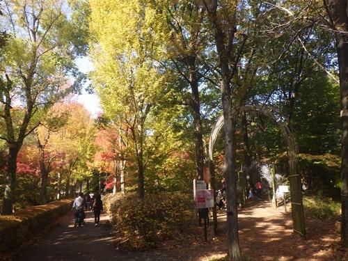 森林公園20中央口