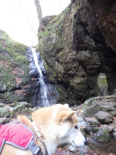綾広の滝5