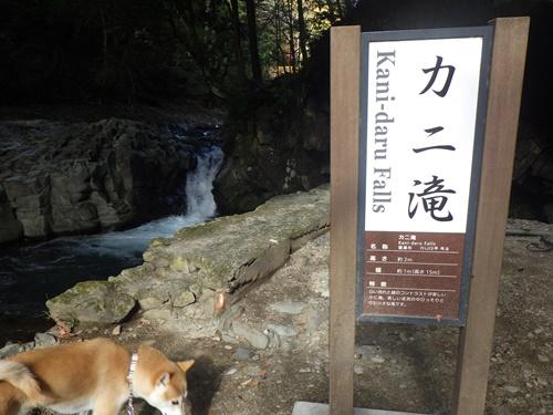 河津七滝6