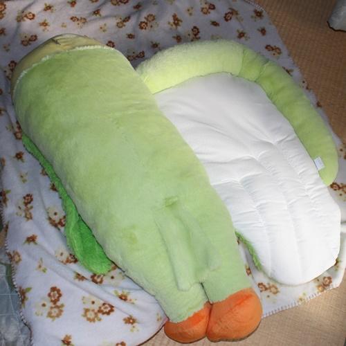 インコの添い寝2