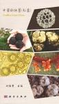 Chinese_truffles.jpg