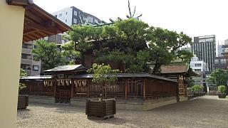 20160917今宮戎神社(その9)