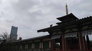 20160917四天王寺(その13)