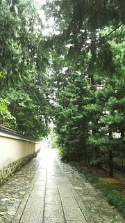 20160918建仁寺(その3)