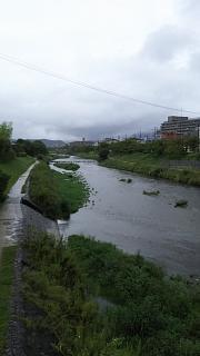 20160918鴨川中州(その1)