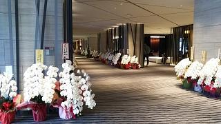 20160919たん熊北店(その29)