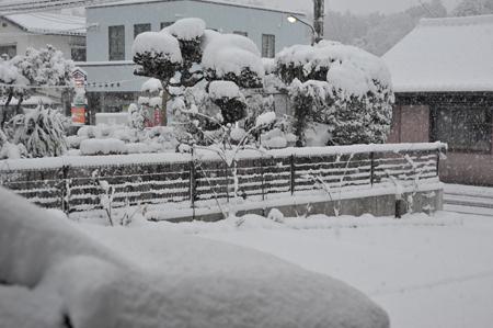 snow20170115-1.jpg