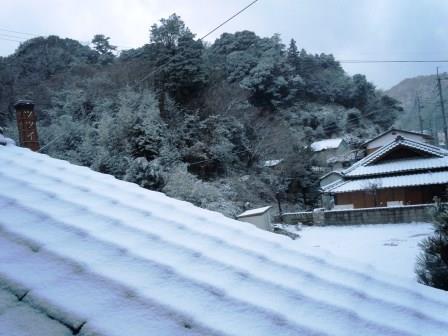 白い一日26(2017-02-11)
