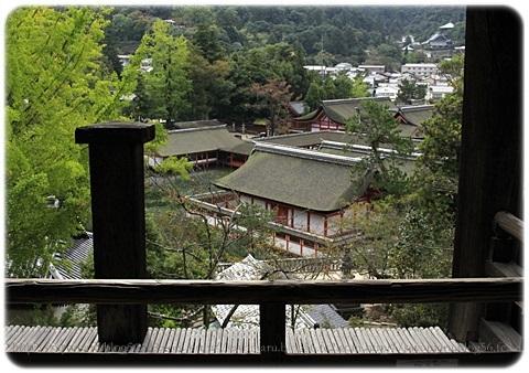 sayomaru19-137.jpg