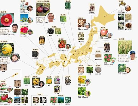 sayomaru19-248.jpg