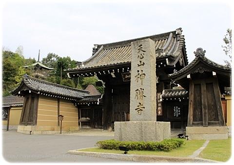 sayomaru19-259.jpg