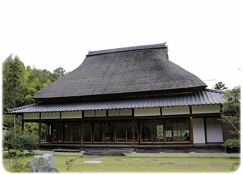 sayomaru19-265.jpg