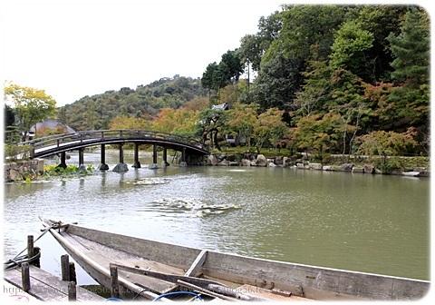 sayomaru19-266.jpg