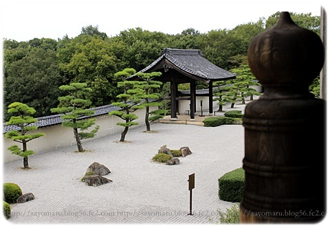 sayomaru19-290.jpg